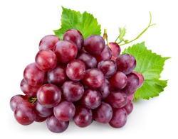 7月旬の青果物-ブドウ